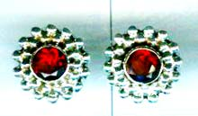 A Silver export collection gem stone earring-w8e069