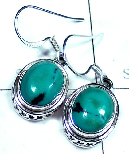 Silver Turquoise Earring-ss5e167