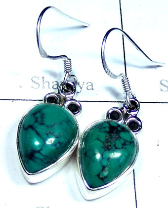Silver Turquoise Earring-ss5e168