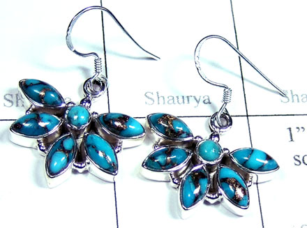 Silver Blue copper Turquoise Earring-ss5e191