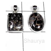 W2TJ998-250 gm-Wholesale Plain silver Turtella Jasper Pendants