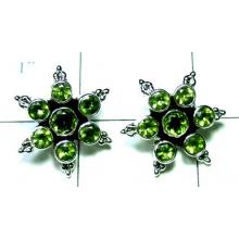 Wholesale Sterling silver Earring-ss4e249